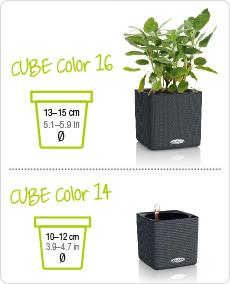 CUBE Color размеров