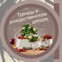 Создайте атмосферу Рождества у себя дома с настольными кашпо LECHUZA